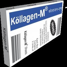 B2. Kollagen_M